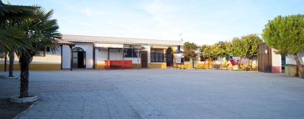 Capeas para empresas en Madrid